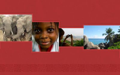 Africa Tourism Report 2013